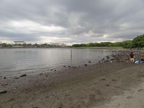 城南島の浜