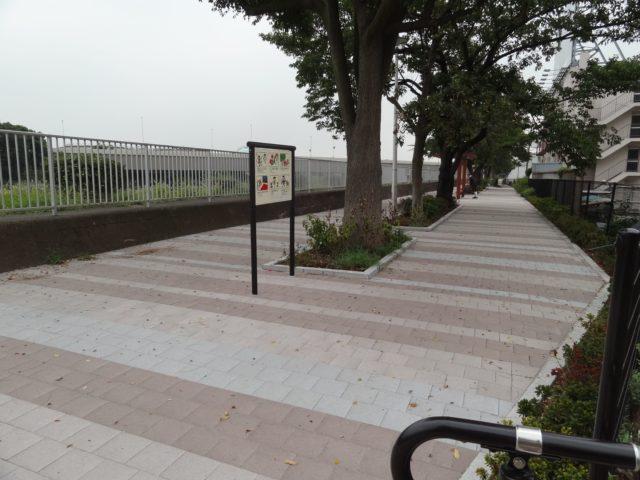 海岸通りの遊歩道