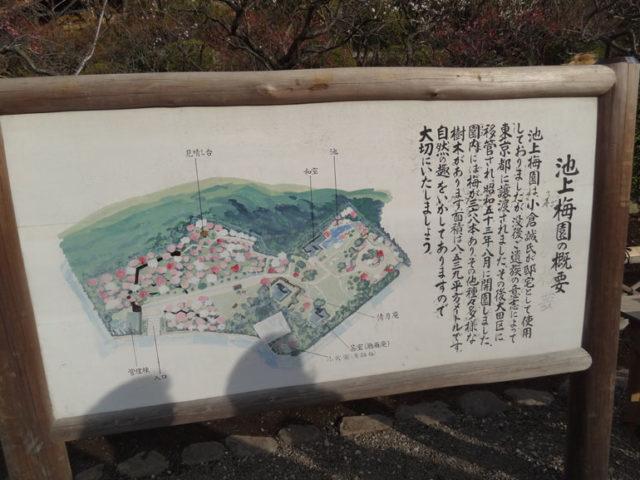 「池上梅園の概要」という説明板